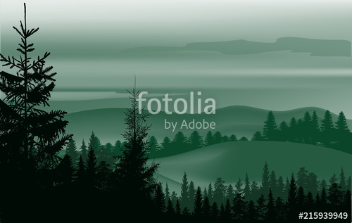 500x317 Green Fir Dark Forest In Hills Stock Image And Royalty Free