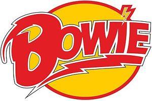 300x199 David Bowie Vector T Shirt Rock Music Band Legend 1947