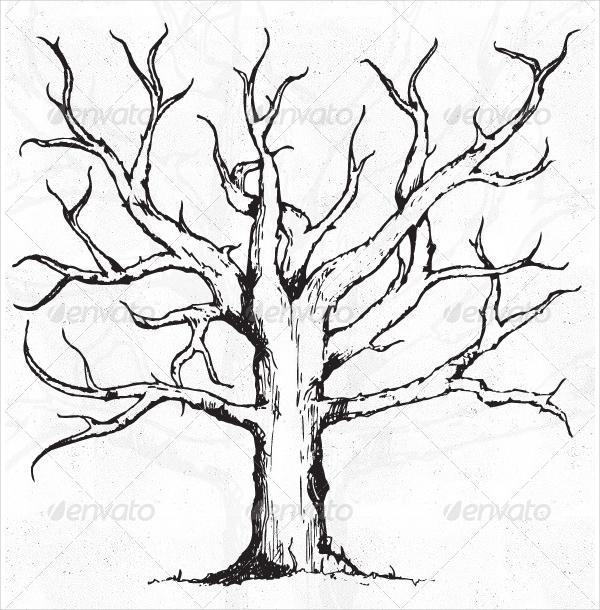 600x610 Tree Vectors