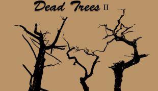 310x180 Dead Tree Vector 1 Free Vectors Ui Download