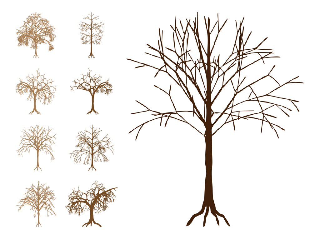 1024x765 Dead Trees Silhouettes Vector Art Amp Graphics