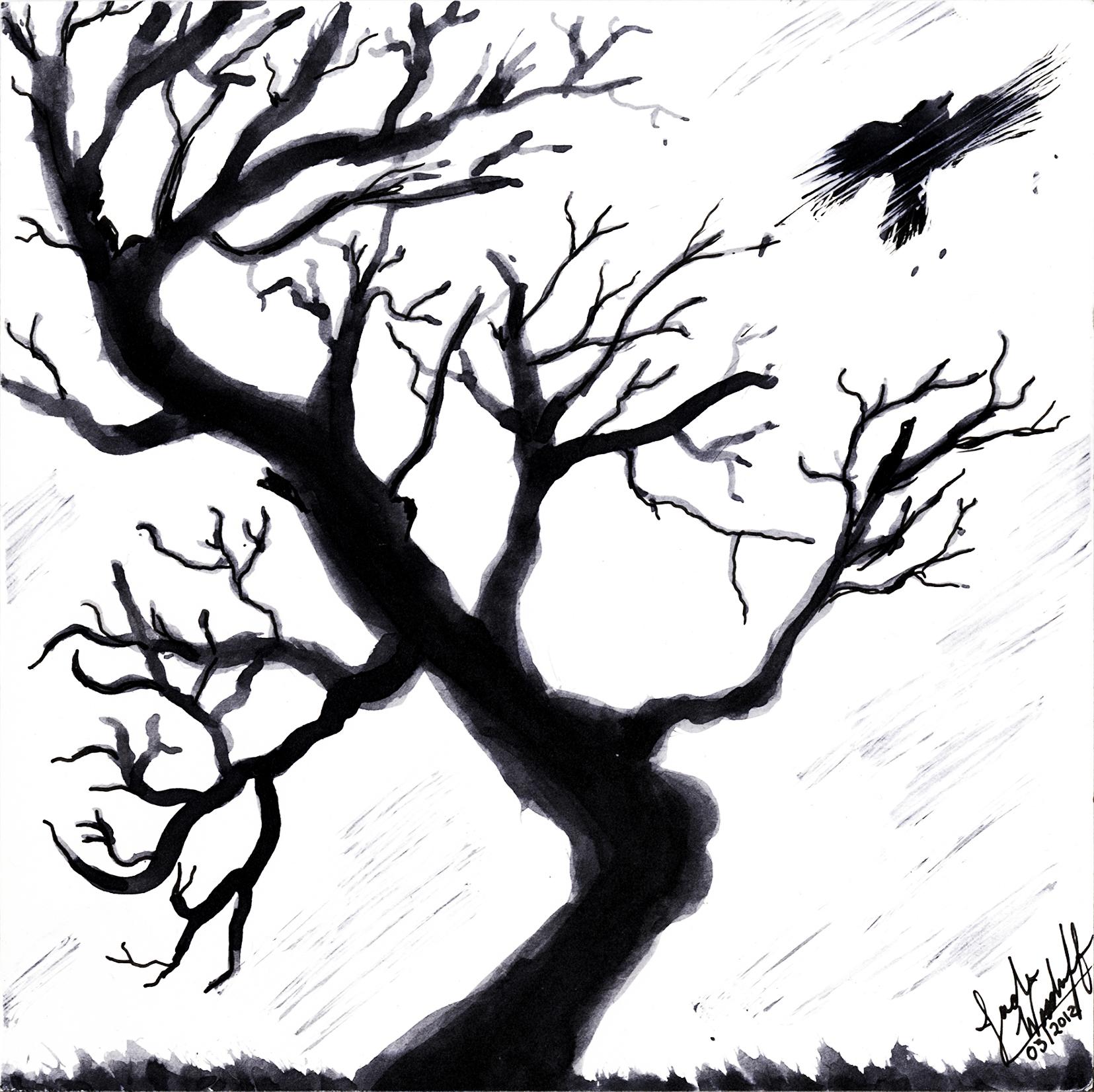 1655x1652 Drawn Dead Tree Amazing Tree