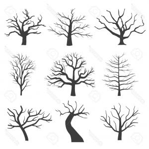 300x300 Photostock Vector Dead Tree Silhouettes Dying Black Scary Trees