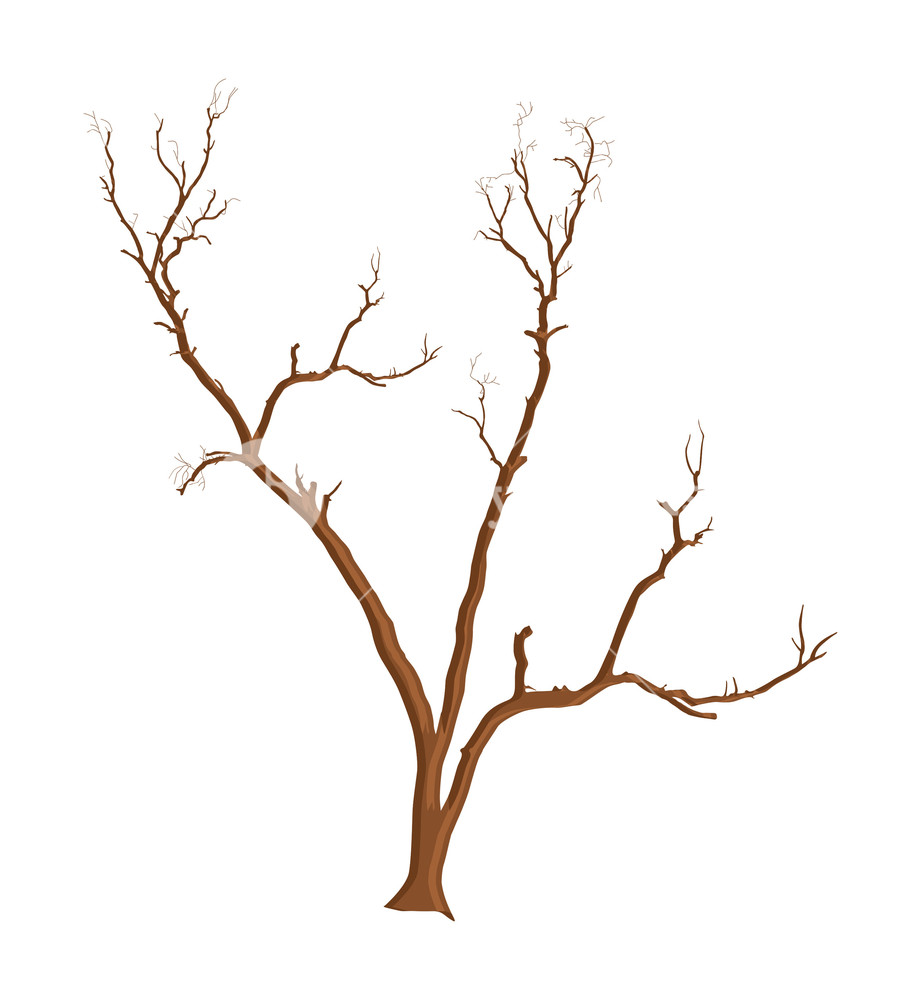 921x1000 Scary Dead Tree Vector Royalty Free Stock Image