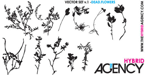 568x294 Free Free Vector Dead Flowers Psd Files, Vectors Amp Graphics