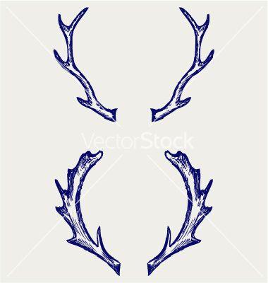 Deer Antlers Vector