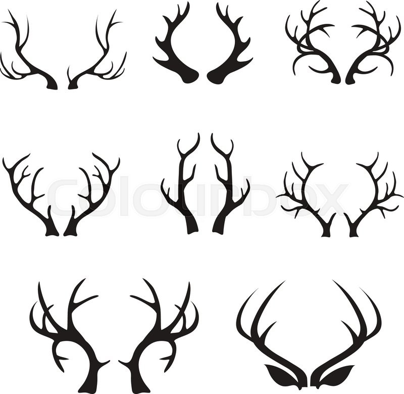 800x779 Vector Deer Antlers Silhouette Isolated On White. Set Of Different