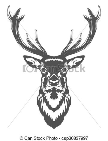 360x470 Deer Head . Monochrome Deer Head Isolated On White Background. .
