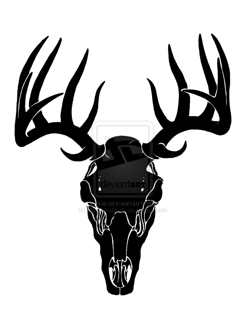 800x1067 Deer Head Silhouette Royalty Free Cliparts Vectors And Stock