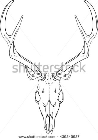 329x470 Collection Of Deer Skull Line Drawing High Quality, Free
