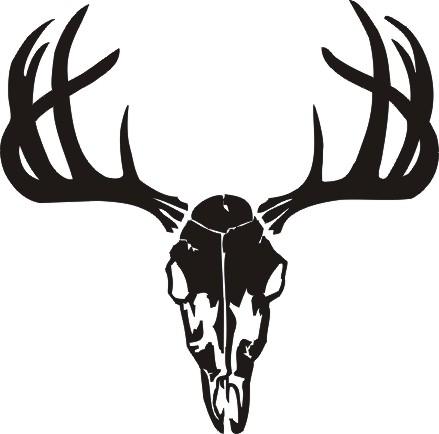 439x434 Buck Skull Clipart Free Clipart