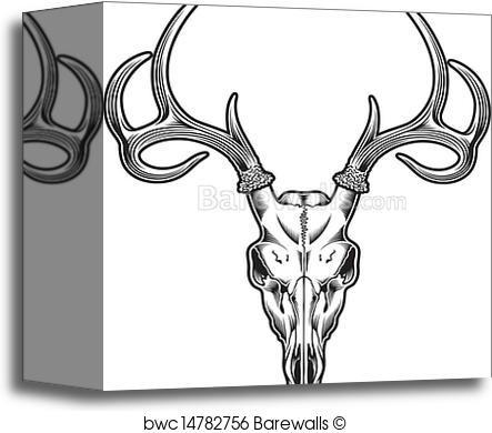 443x390 Canvas Print Of Deer Skull Vector Barewalls Posters Amp Prints