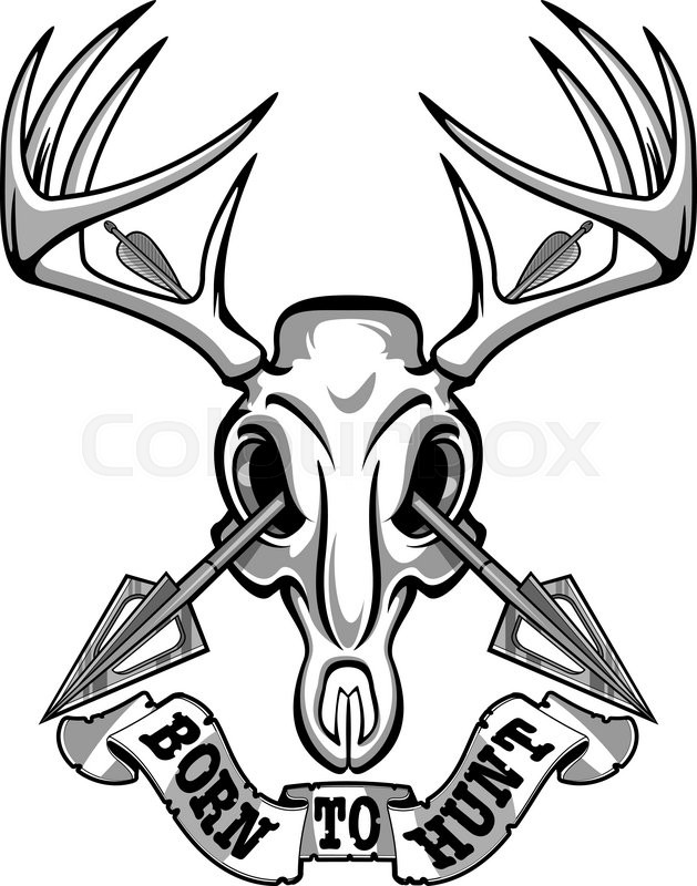 629x800 Crossing Hunting Arrows And Deer Skull Stock Vector Colourbox