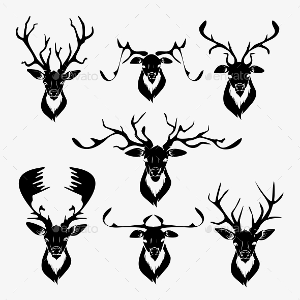 590x590 Deer Vector By Maximapperian Graphicriver