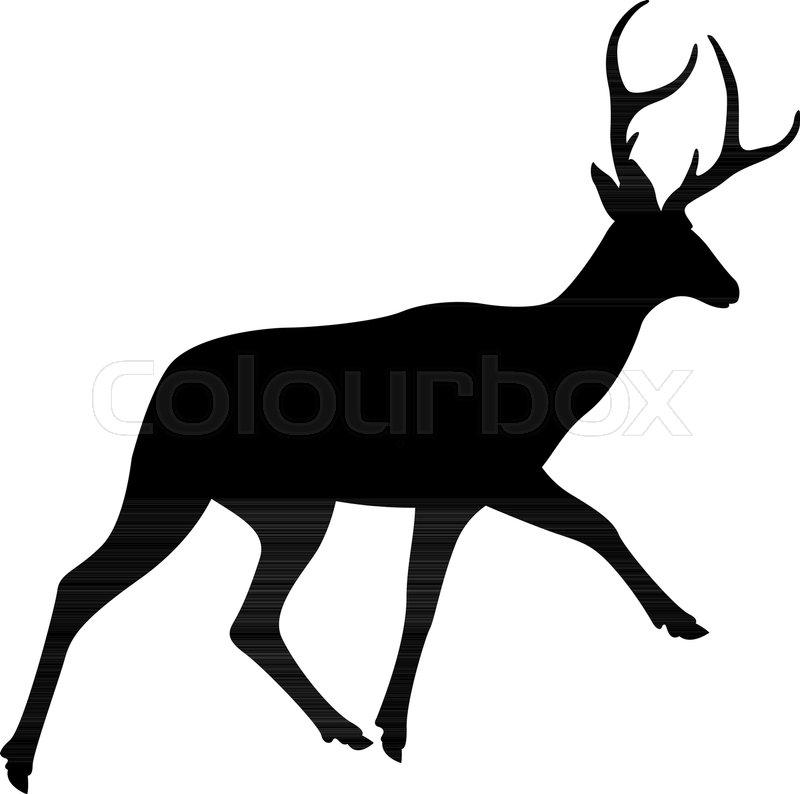 800x794 Deer Vector Illustration Black Silhouette Profile Side Stock