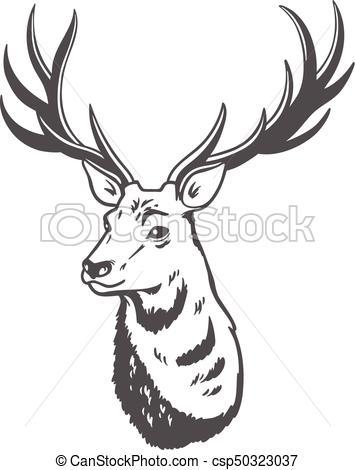 355x470 Vector Illustration. Deer.