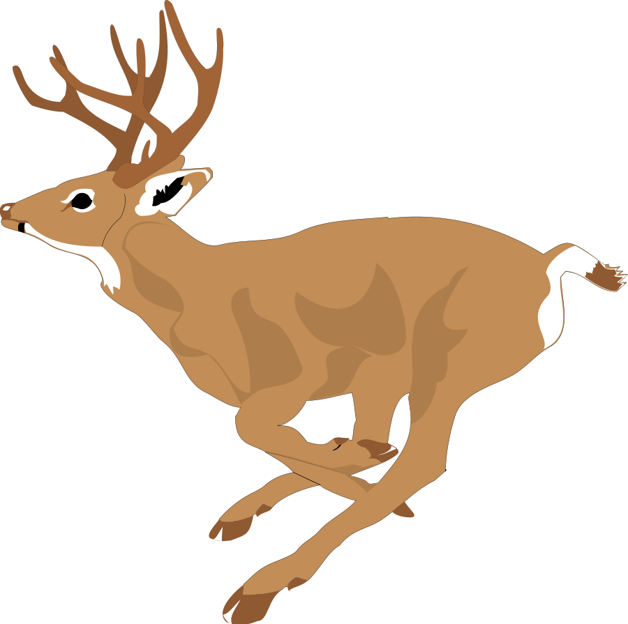900x895 Deer Vector Art Clipart 2 Clipartcow Clipartix
