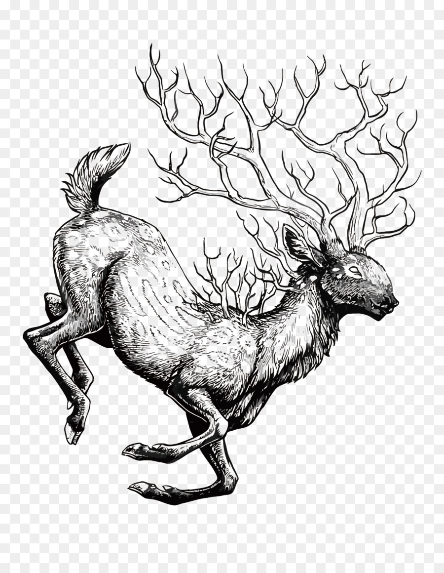 900x1160 Reindeer Red Deer