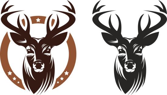 549x313 Deer Clipart Vector