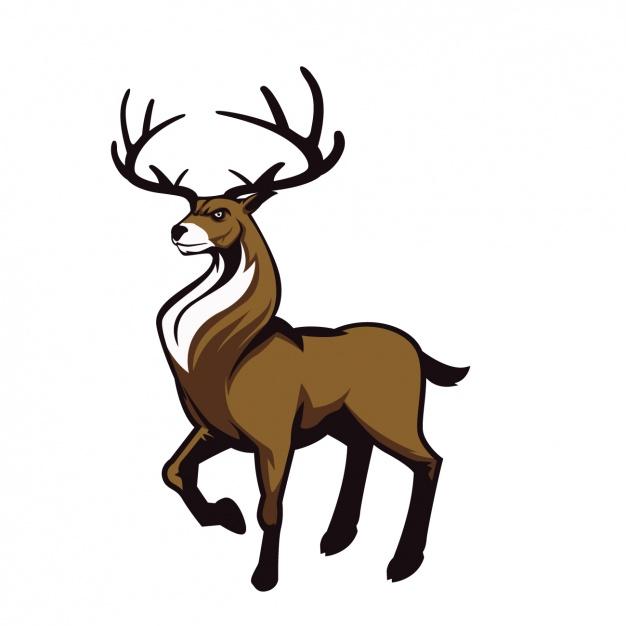 626x626 Deer Free Vector Download