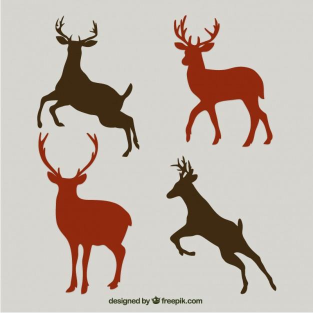 626x626 Deer Horns Vectors, Photos And Psd Files Free Download