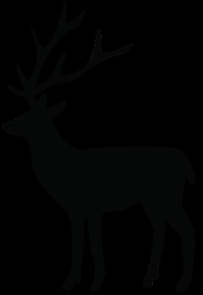 412x600 Deer Vector