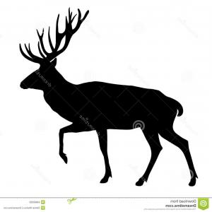 300x300 Royalty Free Stock Images Deer Vector Illustration Silhouette