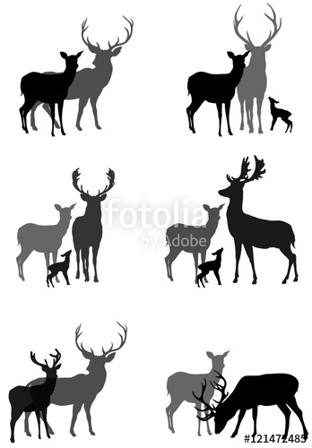 348x500 Set Of Silhouettes Of Deer Family And A Couple Of Deer, Vector