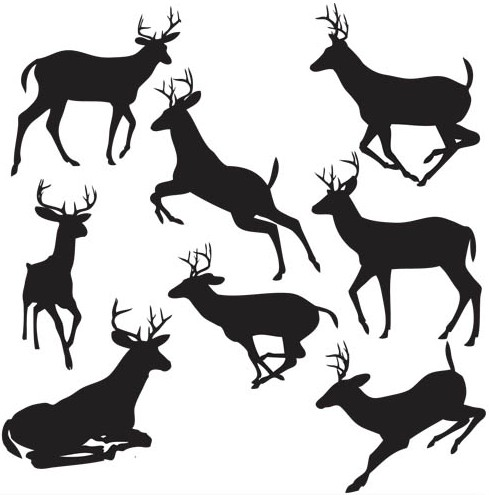 489x495 Silhouettes Of Deer Vector Ai Format Free Vector Download
