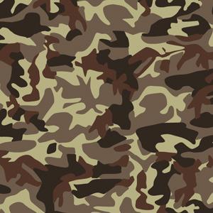 300x300 Desert Camouflage Vector