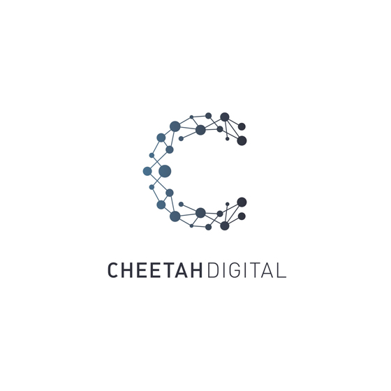 560x560 Vector Capital Investments Cheetah Digital