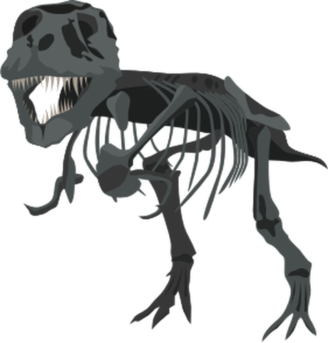 477x500 387 Free Dinosaur Skeleton Vector Public Domain Vectors