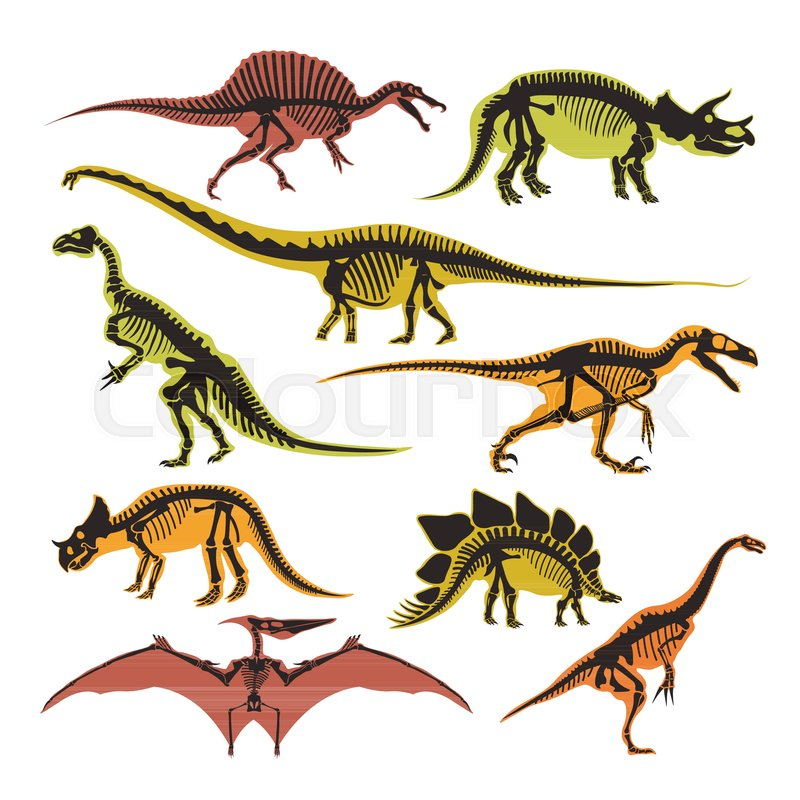 800x800 Dinosaurs Skeletons And Silhouettes Vector Flat Isolated Icons