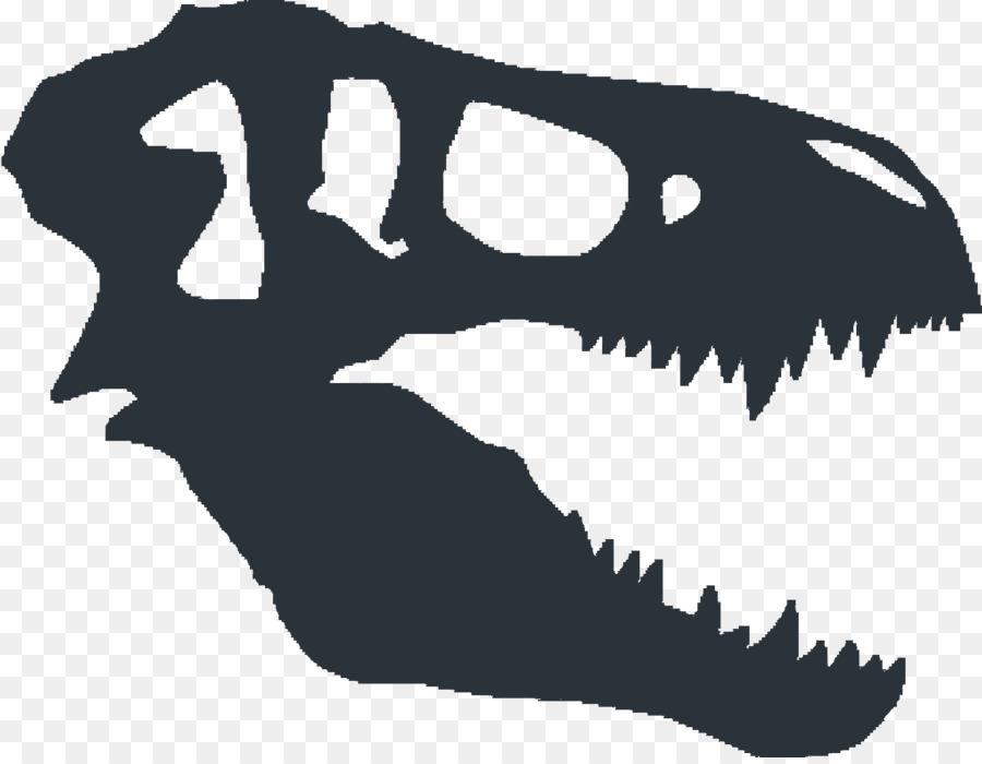 900x700 Tyrannosaurus Dinosaur Fossils Skull