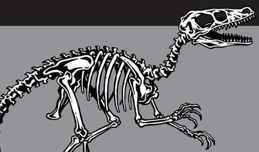 512x300 Dino Skeleton Vector Pack Vector Genius