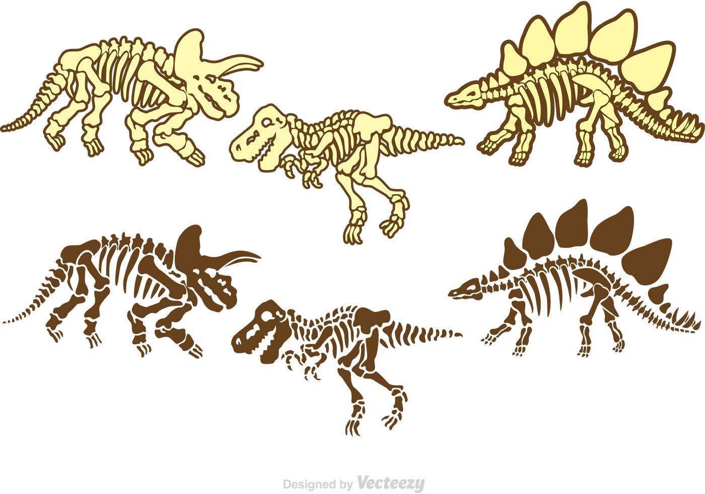 1400x980 Dinosaur Bones Free Vector Art