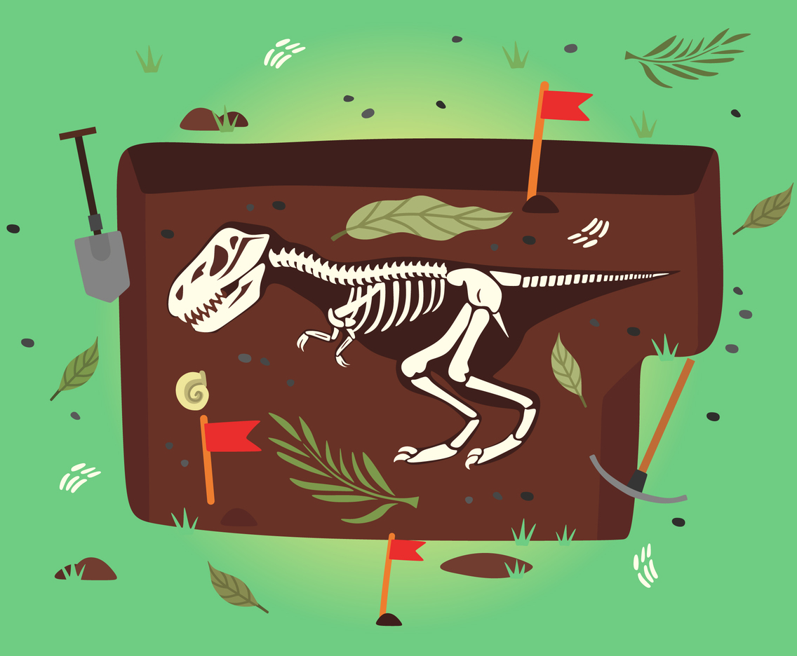 1136x936 Dinosaur Fossil Vector Vector Art Amp Graphics