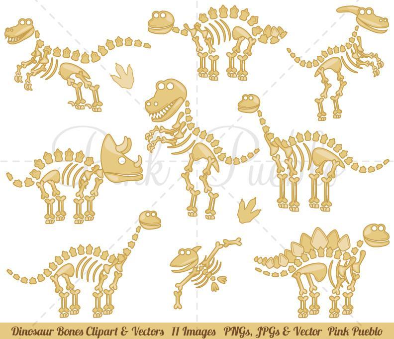 792x681 Dinosaur Fossils And Bones Clipart And Vectors Pinkpueblo