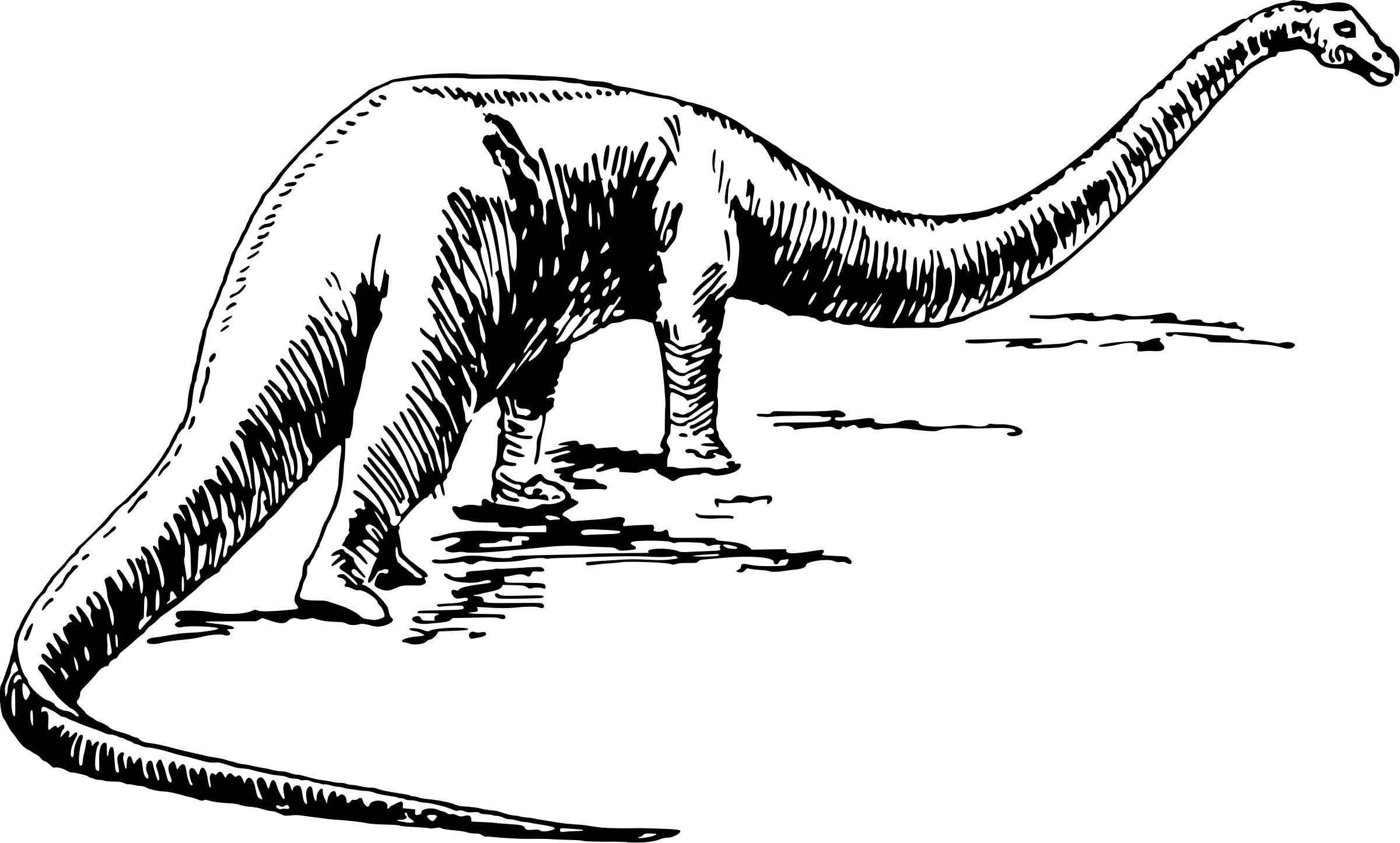 2400x1446 Large Sauropod Dinosaur Vector Clipart Image