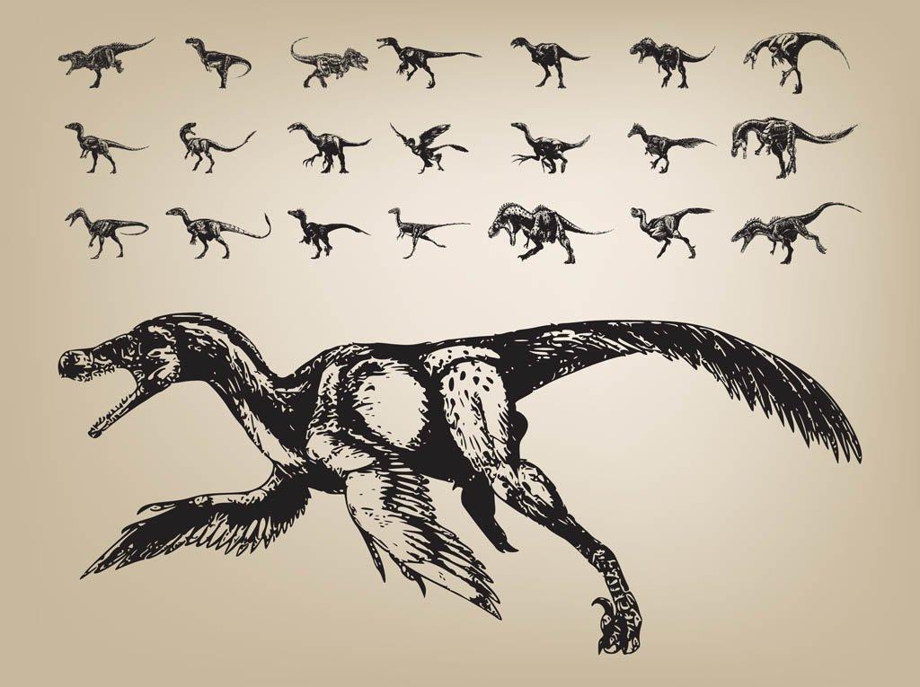 1024x765 Dinosaurs Vector Vector Art Amp Graphics