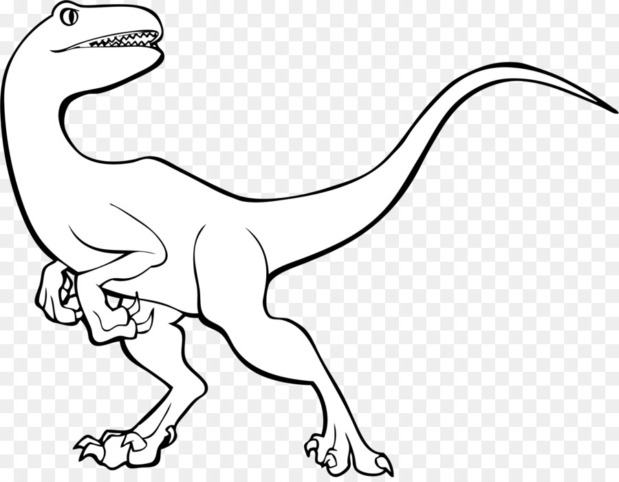 900x700 Tyrannosaurus Velociraptor Line Art Dinosaur Triceratops