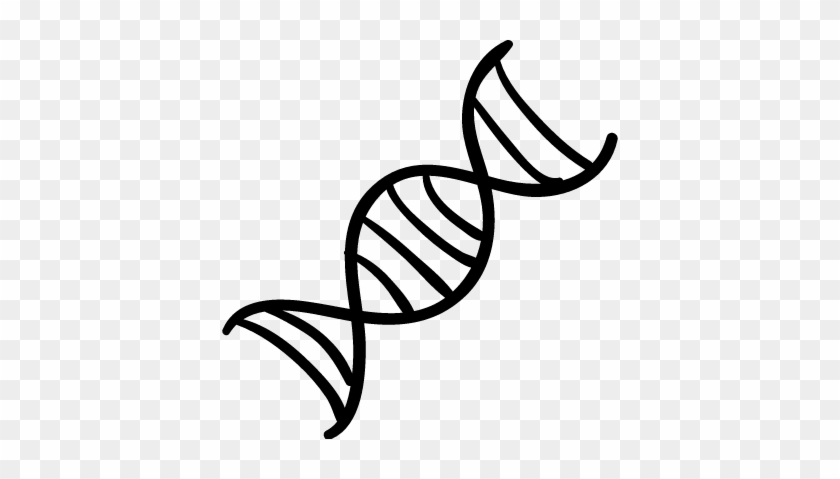 840x479 Dna Chain Vector