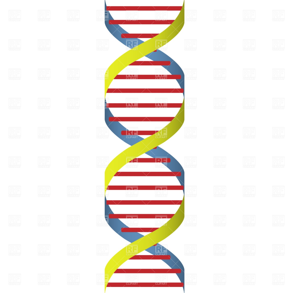1200x1200 Dna Strand Vector Image Vector Artwork Of Healthcare, Medical