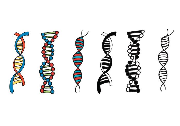 700x490 Free Double Helix Vector Series