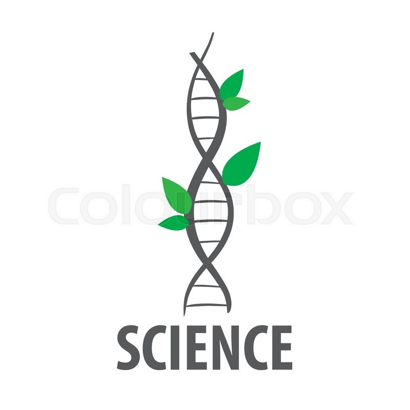800x800 Logo Vector Dna In Form Of Plant Leaves Stock Vector Colourbox