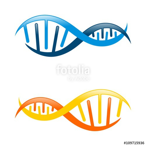 500x500 Colorful Dna Logo Template Stock Image And Royalty Free Vector