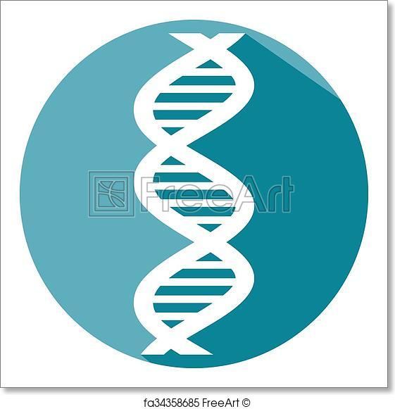 561x581 Free Art Print Of Vector Dna Strand Flat Icon. Vector Dna Strand