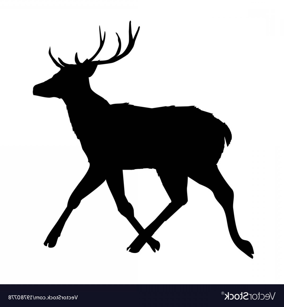 1200x1296 Decoration Elegance Horned Object Shadow Buck Doe Vector Geekchicpro