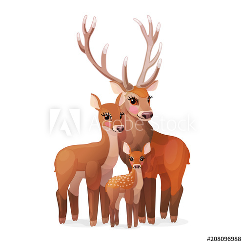 500x500 Vector Red Deer Family. Doe Mom, Baby Fawn, Stag Dad