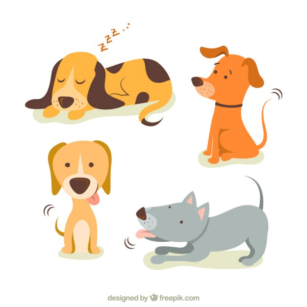 626x626 Dog Vector Png